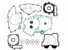 Complete gasket kit with oil seals P400068900015