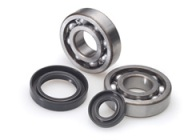 All Balls crankshaft bearings